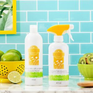 Fiesta Lime Counter Clean & Dish Soap