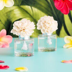 Hibiscus Water Fragrance Flower