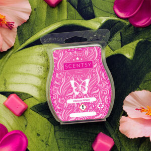 Hibiscus Water Scentsy Bar