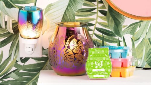 Scentsy UK Summer Collection
