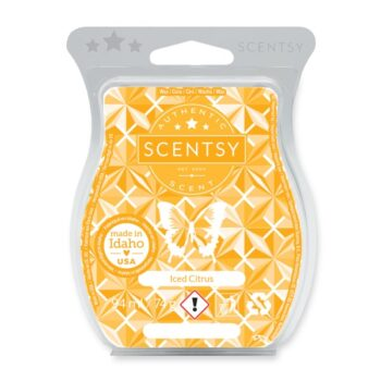 Iced Citrus Scentsy Bar