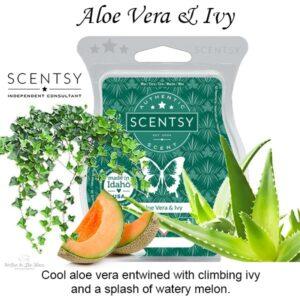 Aloe Vera and Ivy Scentsy Bar