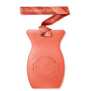 Apple & Cinnamon Sticks Car Bar