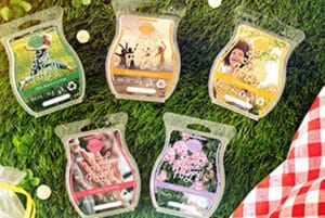 Find Your Happy! Scentsy Wax Bar Collection