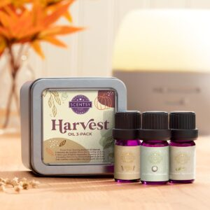 Harvest Scentsy Oil 3 Pack