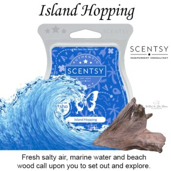 Island Hopping Scentsy Bar