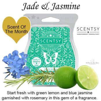 Jade & Jasmine Scentsy Bar