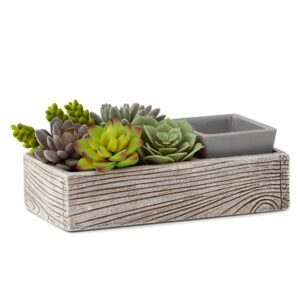 Suc-cute-lent Scentsy Warmer