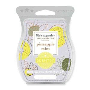 Pineapple Mint Scentsy Wax Bar