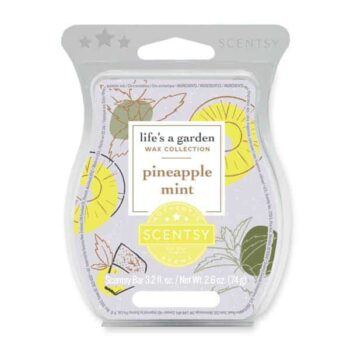 Pineapple Mint Scentsy Wax Bar