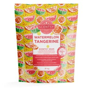 Watermelon Tangerine Scentsy Soak