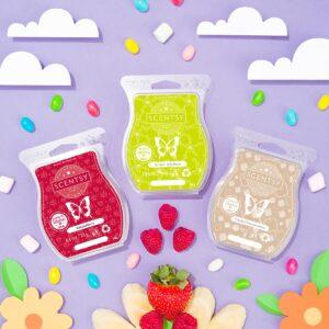 Easter Scentsy UK 3 Bar Wax Bundle