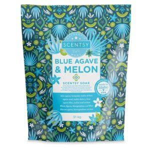 Blue Agave & Melon Scentsy Soak