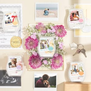 Moment by Moment Scentsy Wax Collection