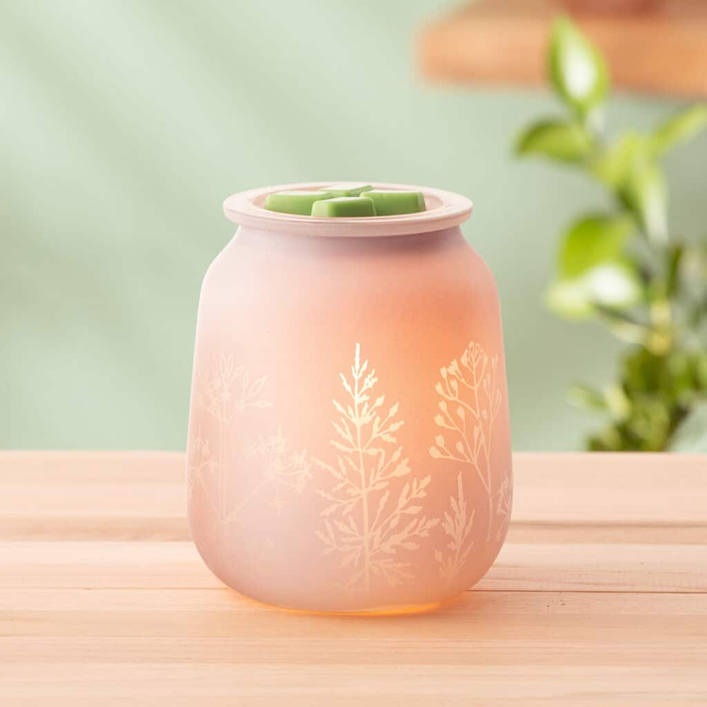 Thyme After Thyme Warmer