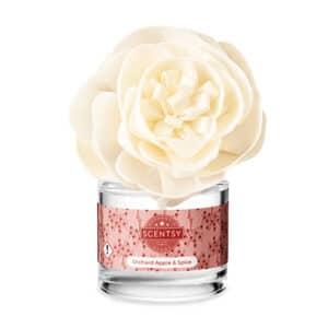 Buttercup Belle Fragrance Flower - Orchard Apple & Spice
