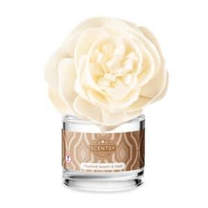 Buttercup Belle Fragrance Flower - Toasted Acorn & Oak