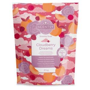 Cloudberry Dreams Scentsy Soak