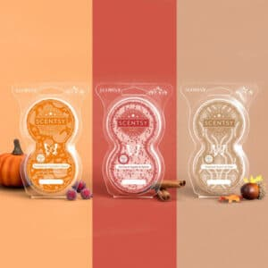 Scentsy Pod Twin Packs in 2021 Harvest Collection fragrances.