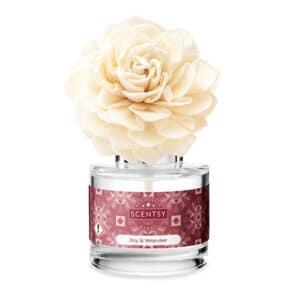 Joy & Wonder Dahlia Darling Fragrance Flower