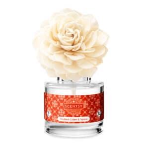 Mulled Cider & Spice Dahlia Darling Fragrance Flower